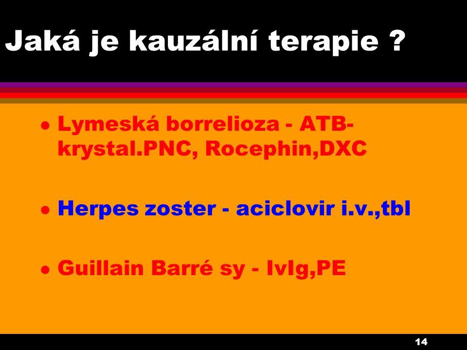 14 Jaká je kauzální terapie ? l Lymeská borrelioza - ATB- krystal.PNC, Rocephin,DXC l Herpes zoster - aciclovir i.v.,tbl l Guillain Barré sy - IvIg,PE