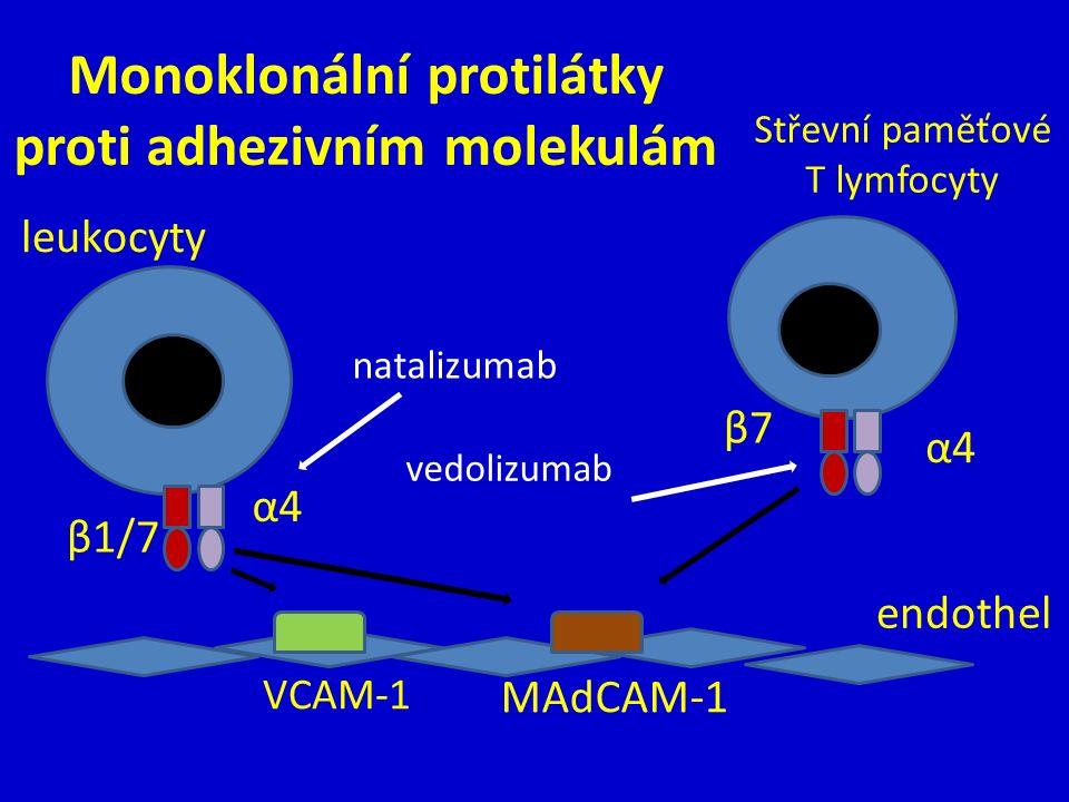Monoklonální protilátky proti adhezivním molekulám leukocyty endothel α4α4 MAdCAM-1 β1/7 VCAM-1 β7β7 α4α4 Střevní paměťové T lymfocyty natalizumab vedolizumab