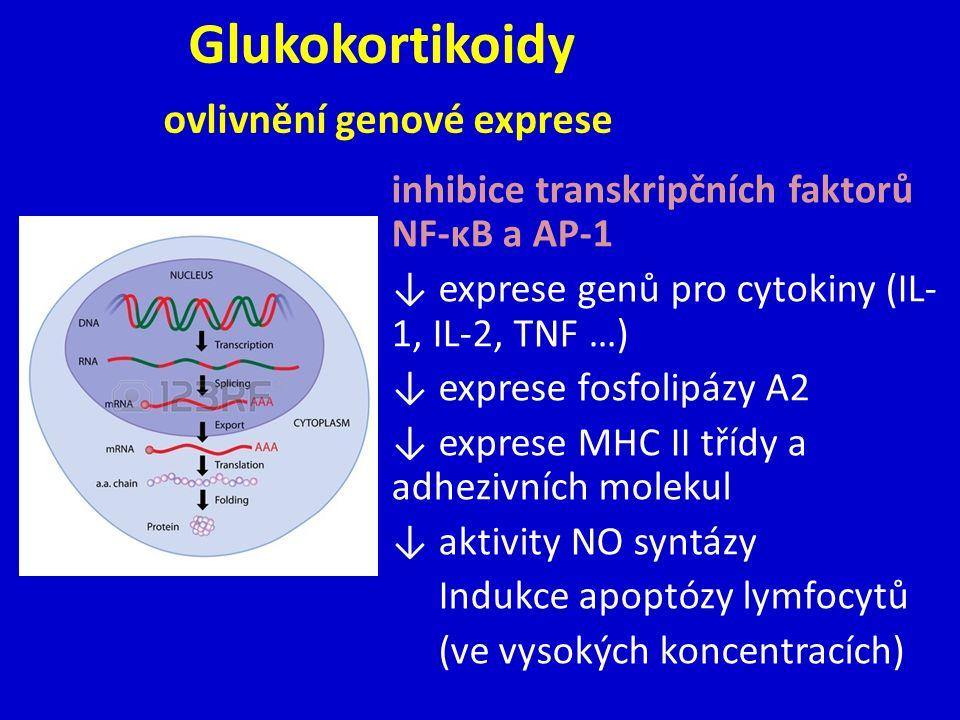 Glukokortikoidy ovlivnění genové exprese inhibice transkripčních faktorů NF-κB a AP-1 ↓ exprese genů pro cytokiny (IL- 1, IL-2, TNF …) ↓ exprese fosfolipázy A2 ↓ exprese MHC II třídy a adhezivních molekul ↓ aktivity NO syntázy Indukce apoptózy lymfocytů (ve vysokých koncentracích)