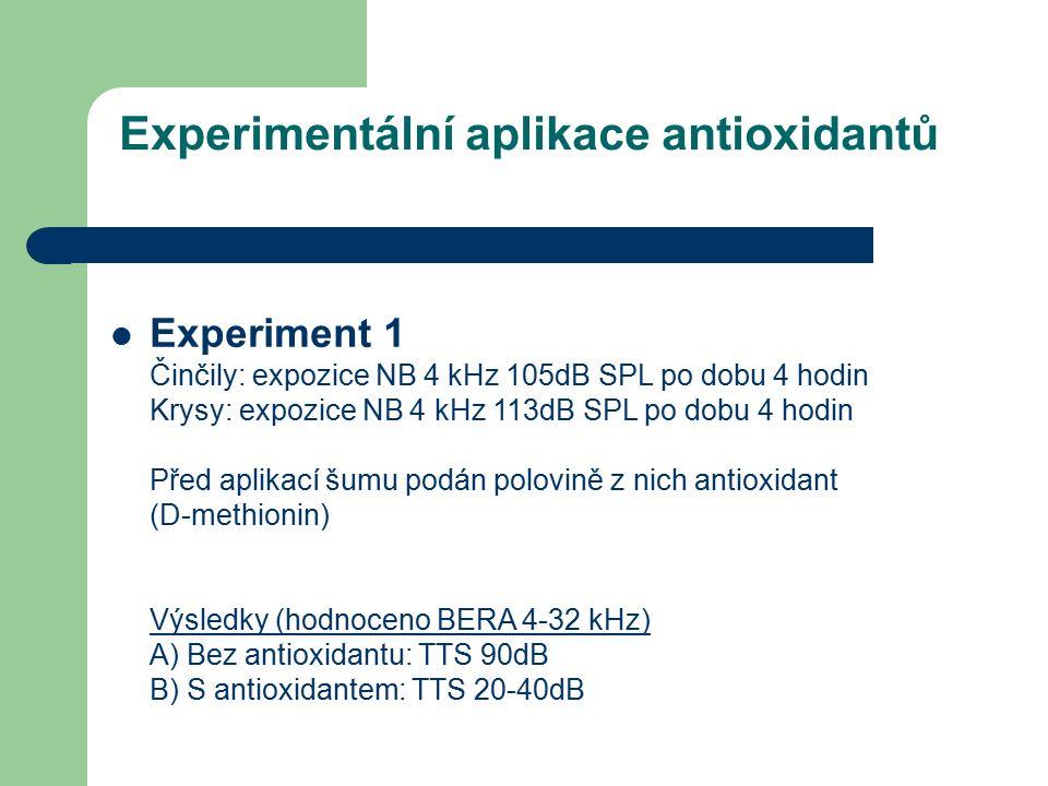 Experimentální aplikace antioxidantů Experiment 1 Činčily: expozice NB 4 kHz 105dB SPL po dobu 4 hodin Krysy: expozice NB 4 kHz 113dB SPL po dobu 4 hodin Před aplikací šumu podán polovině z nich antioxidant (D-methionin) Výsledky (hodnoceno BERA 4-32 kHz) A) Bez antioxidantu: TTS 90dB B) S antioxidantem: TTS 20-40dB