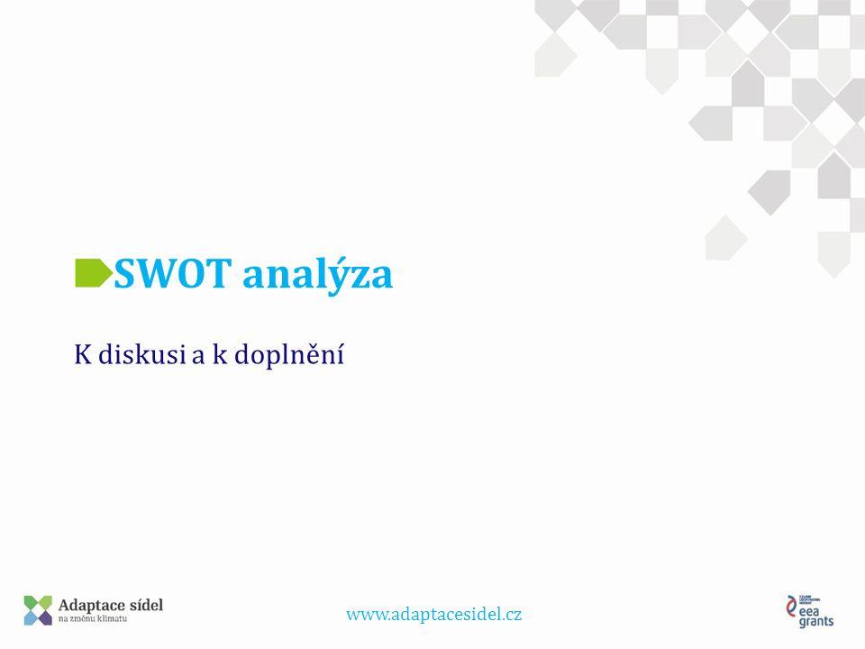 www.adaptacesidel.cz SWOT analýza K diskusi a k doplnění
