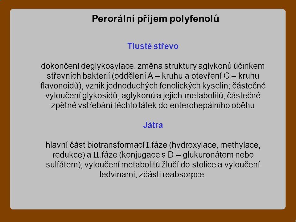 Tlusté střevo dokončení deglykosylace, změna struktury aglykonů účinkem střevních bakterií (oddělení A – kruhu a otevření C – kruhu flavonoidů), vznik jednoduchých fenolických kyselin; částečné vyloučení glykosidů, aglykonů a jejich metabolitů, částečné zpětné vstřebání těchto látek do enterohepálního oběhu Játra hlavní část biotransformací .fáze (hydroxylace, methylace, redukce) a .fáze (konjugace s D – glukuronátem nebo sulfátem); vyloučení metabolitů žlučí do stolice a vyloučení ledvinami, zčásti reabsorpce.