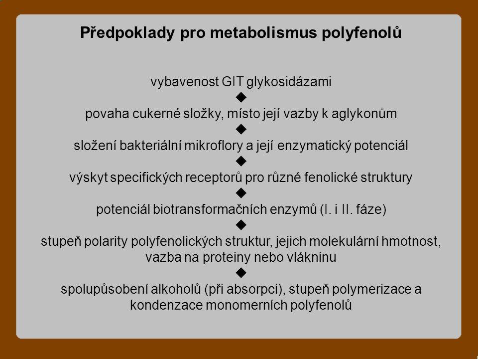Předpoklady pro metabolismus polyfenolů vybavenost GIT glykosidázami  povaha cukerné složky, místo její vazby k aglykonům  složení bakteriální mikroflory a její enzymatický potenciál  výskyt specifických receptorů pro různé fenolické struktury  potenciál biotransformačních enzymů (I.
