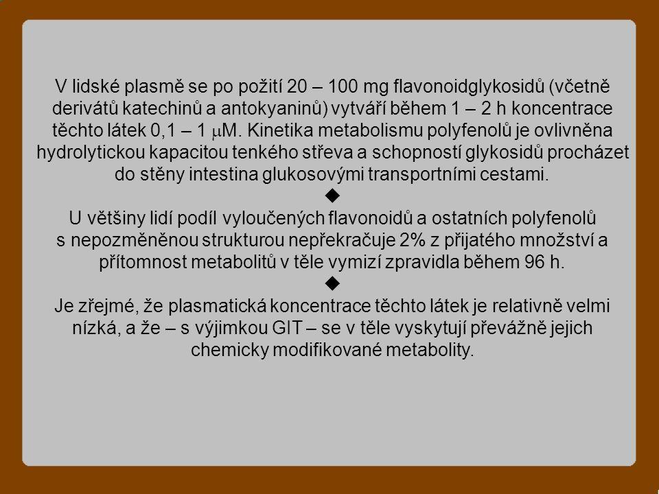 V lidské plasmě se po požití 20 – 100 mg flavonoidglykosidů (včetně derivátů katechinů a antokyaninů) vytváří během 1 – 2 h koncentrace těchto látek 0,1 – 1  M.
