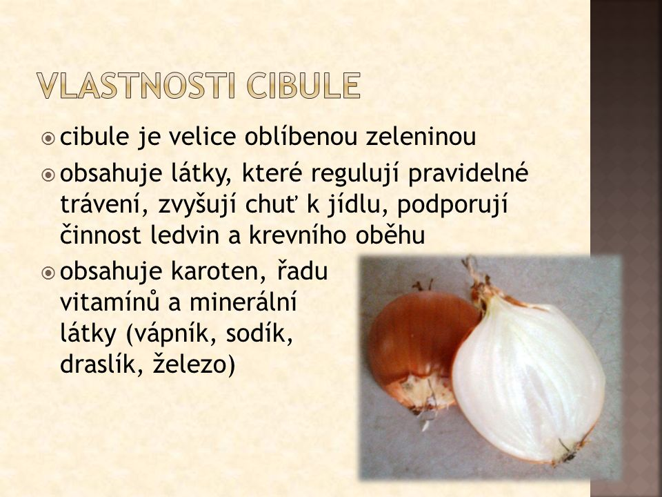  cibule je velice oblíbenou zeleninou  obsahuje látky, které regulují pravidelné trávení, zvyšují chuť k jídlu, podporují činnost ledvin a krevního oběhu  obsahuje karoten, řadu vitamínů a minerální látky (vápník, sodík, draslík, železo)