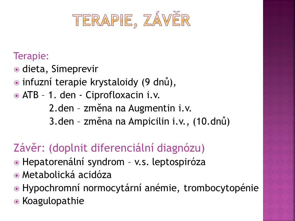 Terapie:  dieta, Simeprevir  infuzní terapie krystaloidy (9 dnů),  ATB – 1. den - Ciprofloxacin i.v. 2.den – změna na Augmentin i.v. 3.den – změna