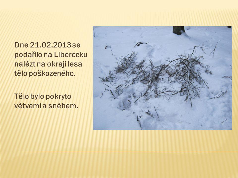 Dne 21.02.2013 se podařilo na Liberecku nalézt na okraji lesa tělo poškozeného. Tělo bylo pokryto větvemi a sněhem.