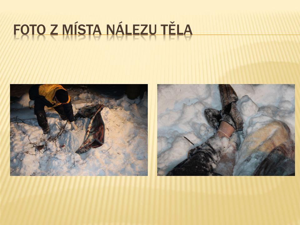 Na základě zjištěných informací byli téhož dne, tedy 21.02.2013 zadrženi ve večerních hodinách zásahovou jednotkou Středočeského kraje 3 a následujícího dne v ranních hodinách další 2 pachatelé.