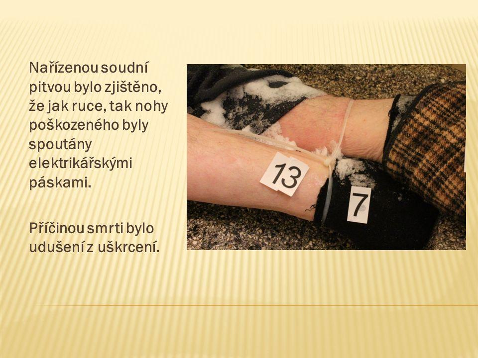 Pachatelé byli následujícího dne obviněni:  jeden pro zločin vraždy podle § 140 odst.