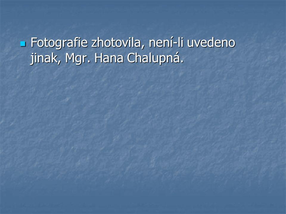 Fotografie zhotovila, není-li uvedeno jinak, Mgr. Hana Chalupná.