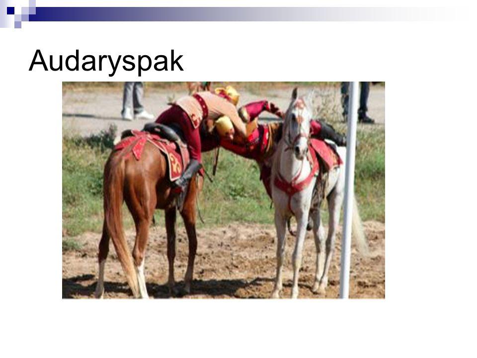 Audaryspak