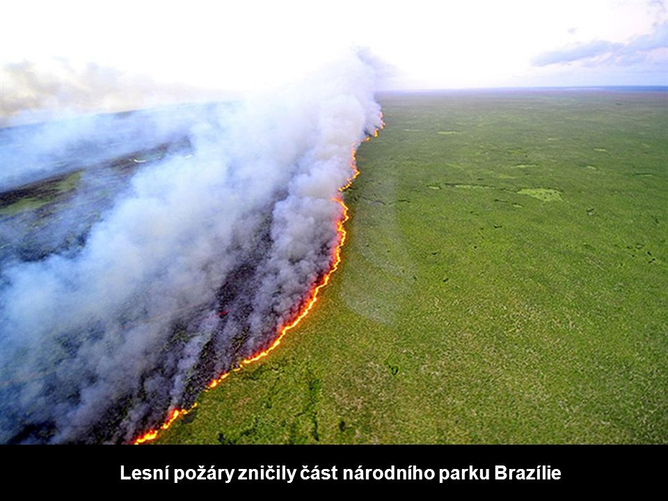 Lesní požáry zničily část národního parku Brazílie