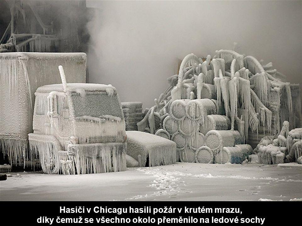 Hasiči v Chicagu hasili požár v krutém mrazu, díky čemuž se všechno okolo přeměnilo na ledové sochy