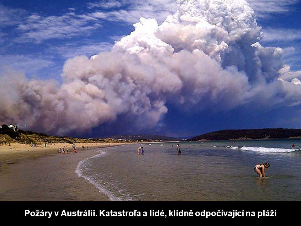 Požáry v Austrálii. Katastrofa a lidé, klidně odpočívající na pláži