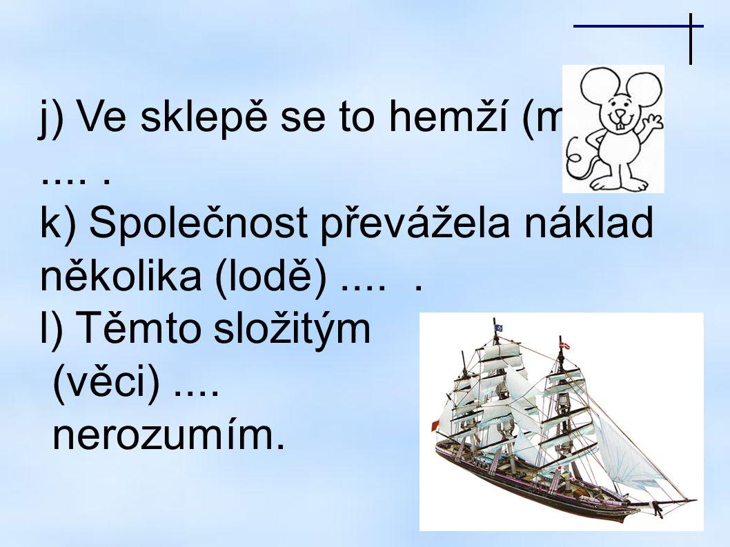 j) Ve sklepě se to hemží (myši).....k) Společnost převážela náklad několika (lodě).....
