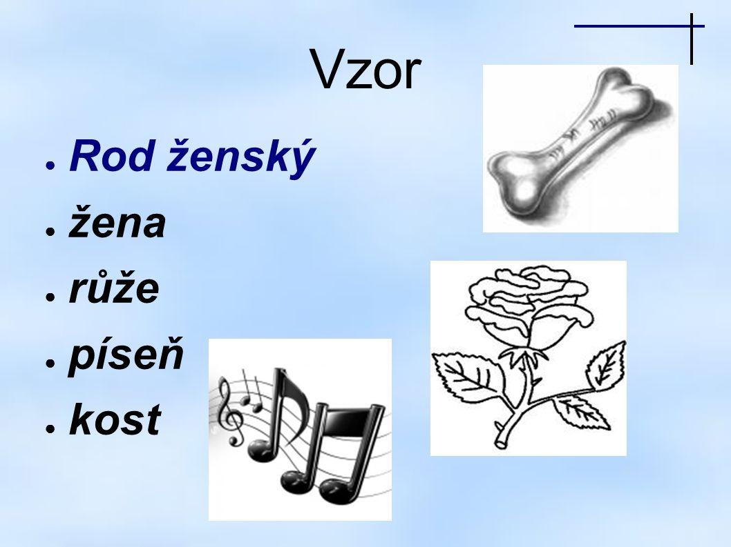 Vzor ● Rod ženský ● žena ● růže ● píseň ● kost