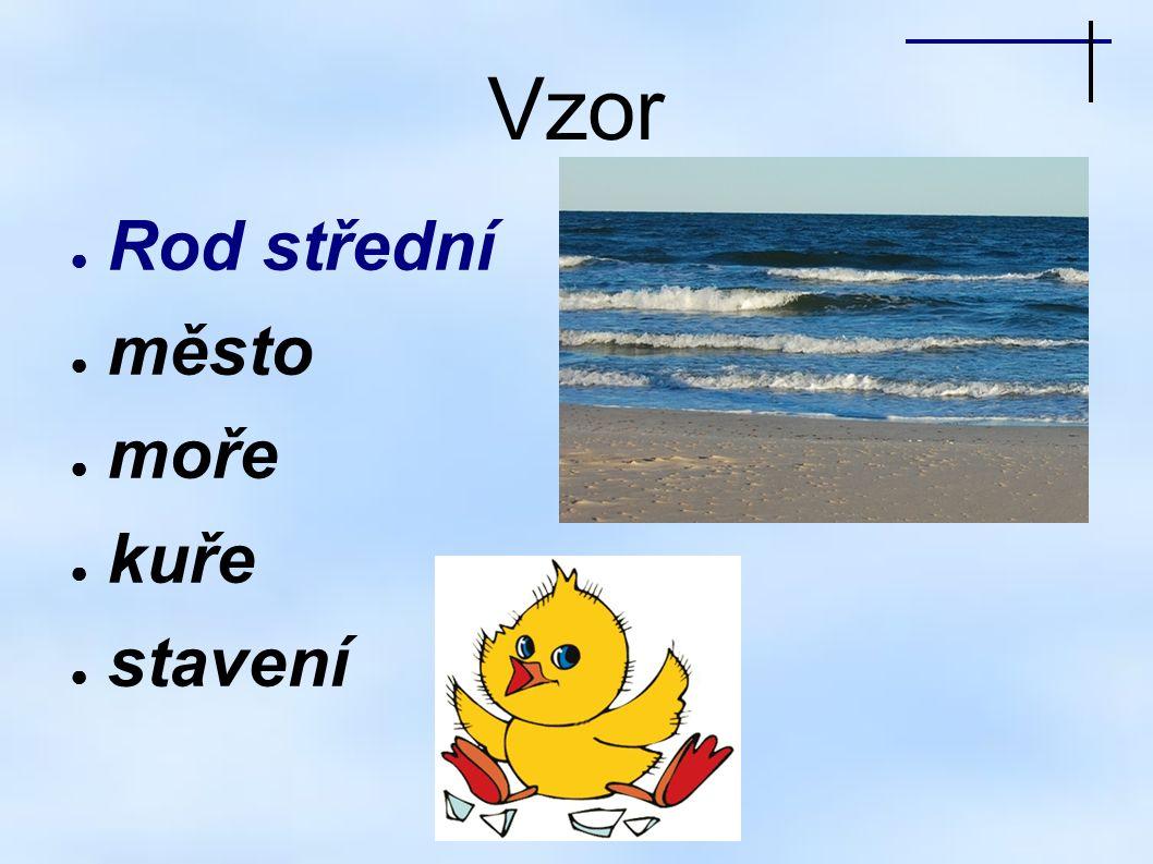 Vzor ● Rod střední ● město ● moře ● kuře ● stavení