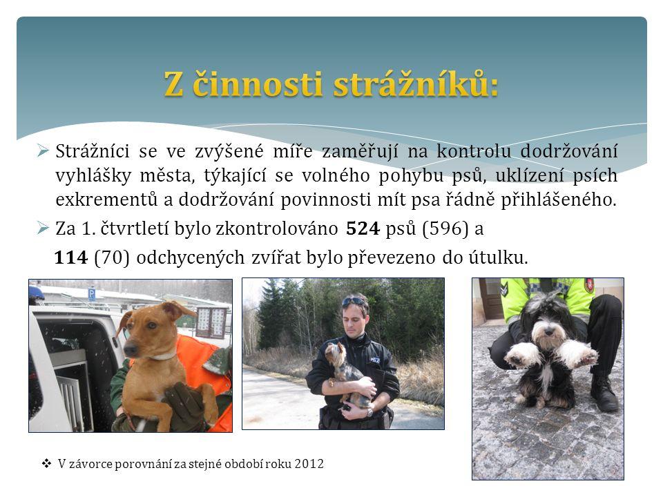  Strážníci se ve zvýšené míře zaměřují na kontrolu dodržování vyhlášky města, týkající se volného pohybu psů, uklízení psích exkrementů a dodržování povinnosti mít psa řádně přihlášeného.