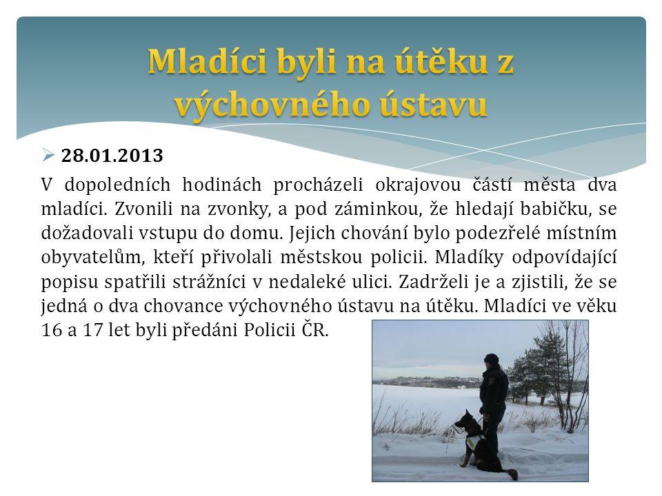  28.01.2013 V dopoledních hodinách procházeli okrajovou částí města dva mladíci.