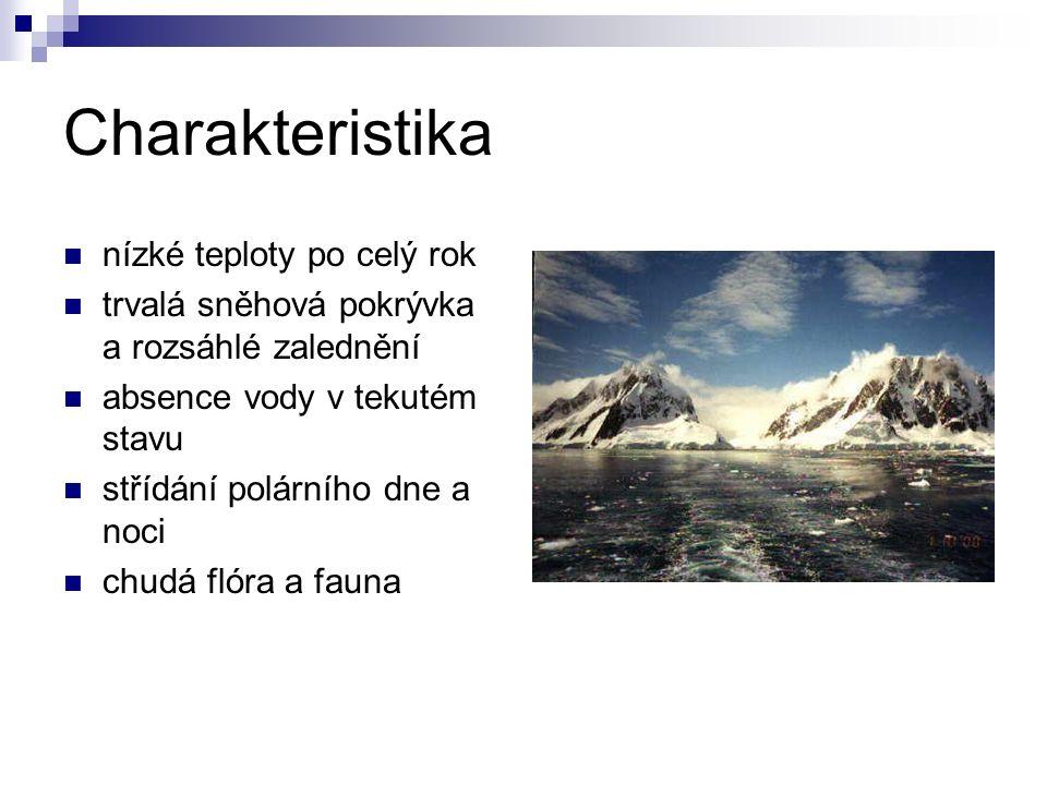 Tučňáci (Sphenisciformes) tučňák kroužkový (Pygoscelis adeliae)- nejpočetnější tučňák císařský (Aptenodytes forsteri), modrošedý, až 1 metr vysoký pták, obývá mořský led na okraji Antarktidy a je jediným ptákem obývajícím Antarktidu i v zimě (v tomto období vyvádí mladé tučňák uzdičkový (P.antarctica) tučňák oslí (P.