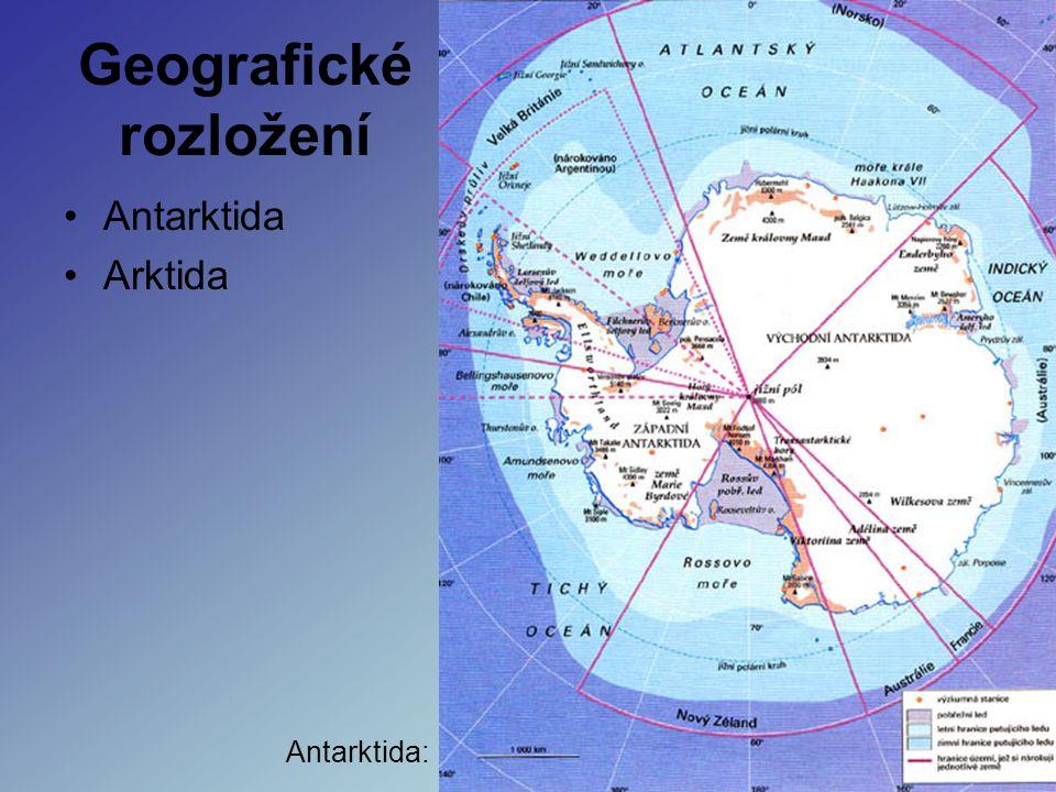Geografické rozložení Antarktida Arktida Antarktida: Arktida