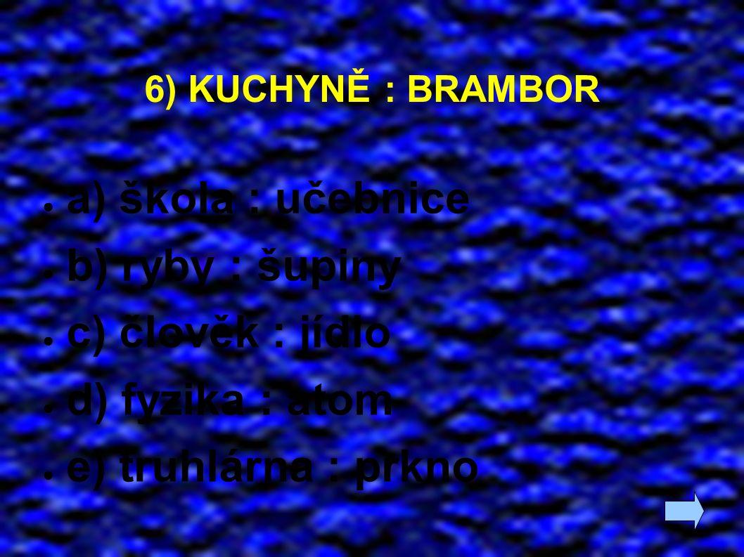 6) KUCHYNĚ : BRAMBOR ● a) škola : učebnice ● b) ryby : šupiny ● c) člověk : jídlo ● d) fyzika : atom ● e) truhlárna : prkno