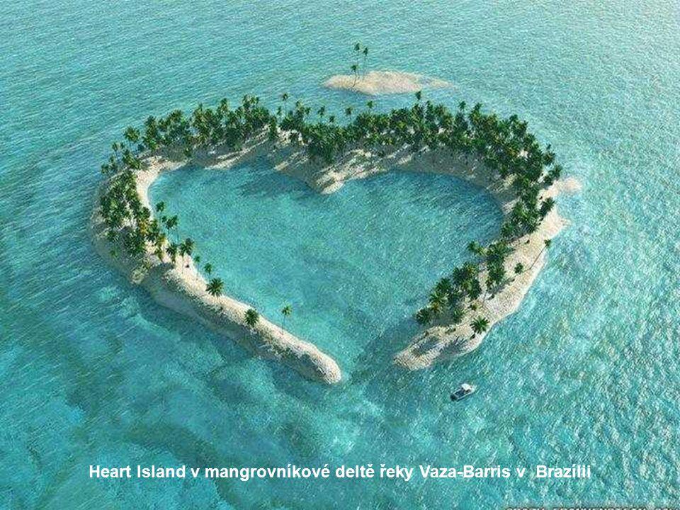 Heart Island v mangrovníkové deltě řeky Vaza-Barris v Brazílii