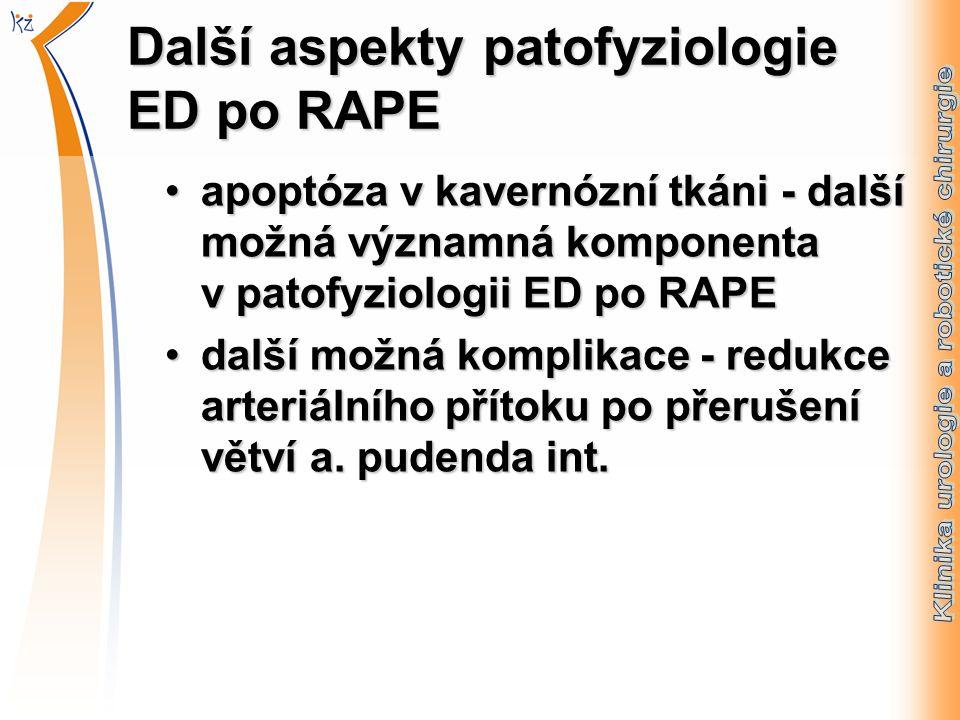 Další aspekty patofyziologie ED po RAPE apoptóza v kavernózní tkáni - další možná významná komponenta v patofyziologii ED po RAPEapoptóza v kavernózní tkáni - další možná významná komponenta v patofyziologii ED po RAPE další možná komplikace - redukce arteriálního přítoku po přerušení větví a.