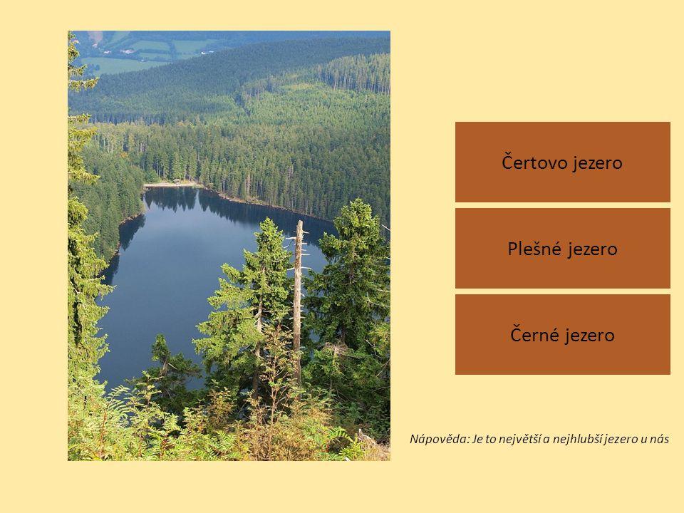 Čertovo jezero Černé jezero Plešné jezero Nápověda: Je to největší a nejhlubší jezero u nás