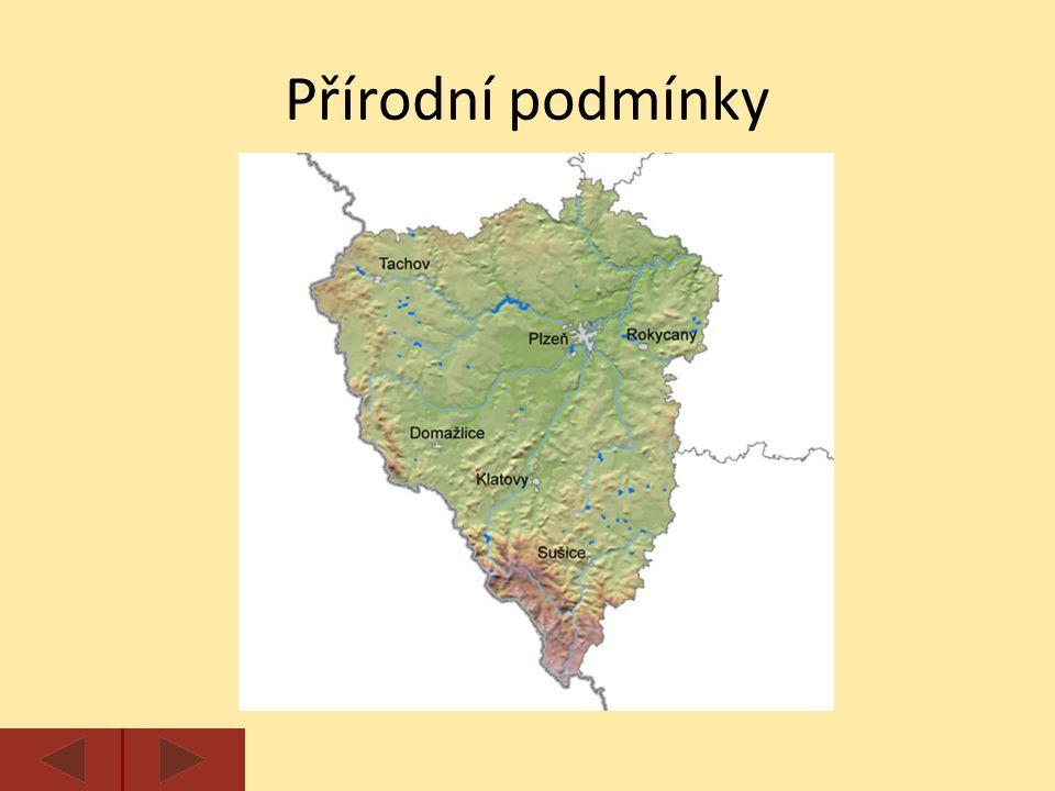 Většinu území kraje zabírá Plzeňská pahorkatina, hranici s Německem tvoří pohoří Český les a Šumava.