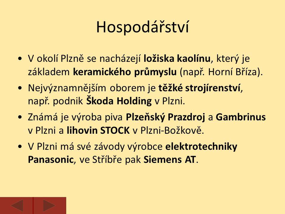 Hospodářství V okolí Plzně se nacházejí ložiska kaolínu, který je základem keramického průmyslu (např.