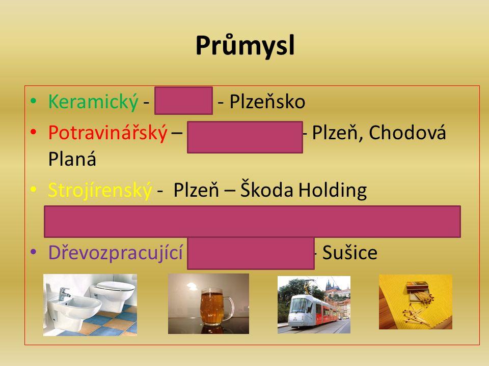 Průmysl Keramický - kaolin - Plzeňsko Potravinářský – pivovarnictví- Plzeň, Chodová Planá Strojírenský - Plzeň – Škoda Holding (lodní šrouby, elektrické lokomotivy, turbíny) Dřevozpracující - výroba sirek - Sušice