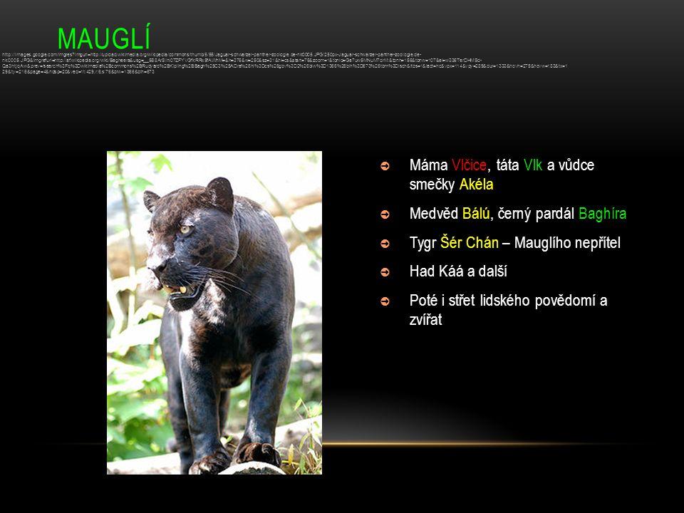 MAUGLÍ ➲ Máma Vlčice, táta Vlk a vůdce smečky Akéla ➲ Medvěd Bálú, černý pardál Baghíra ➲ Tygr Šér Chán – Mauglího nepřítel ➲ Had Káá a další ➲ Poté i
