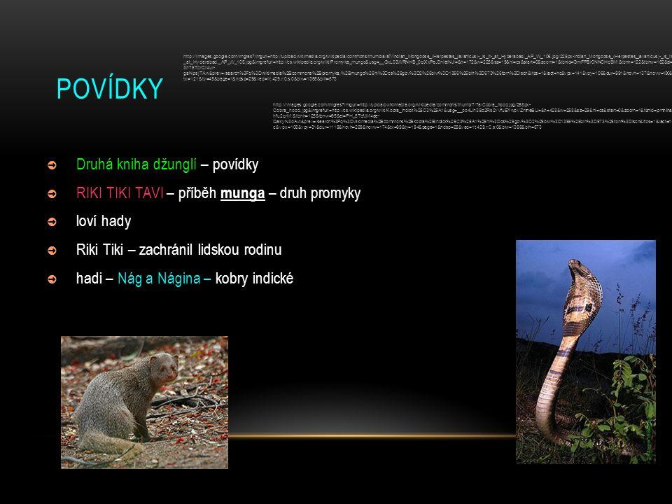 POVÍDKY ➲ Druhá kniha džunglí – povídky ➲ RIKI TIKI TAVI – příběh munga – druh promyky ➲ loví hady ➲ Riki Tiki – zachránil lidskou rodinu ➲ hadi – Nág a Nágina – kobry indické http://images.google.com/imgres?imgurl=http://upload.wikimedia.org/wikipedia/commons/thumb/a/a7/Indian_Mongoose_(Herpestes_javanicus)-_is_it-_at_Hyderabad,_AP_W_106.jpg/225px-Indian_Mongoose_(Herpestes_javanicus)-_is_it- _at_Hyderabad,_AP_W_106.jpg&imgrefurl=http://cs.wikipedia.org/wiki/Promyka_mungo&usg=__GxL03WRNHB_0qiXxPeJ3nIetNJI=&h=172&w=225&sz=19&hl=cs&start=0&zoom=1&tbnid=GmFPBr0NNCHdSM:&tbnh=122&tbnw=162&ei= 3n76TcrCI4ur- gaNpsjTAw&prev=/search%3Fq%3Dwikimedia%2Bcommons%2Bpromyka,%2Bmungo%26hl%3Dcs%26gbv%3D2%26biw%3D1366%26bih%3D673%26tbm%3Disch&itbs=1&iact=hc&vpx=141&vpy=106&dur=991&hovh=137&hovw=180& tx=121&ty=45&page=1&ndsp=29&ved=1t:429,r:0,s:0&biw=1366&bih=673 http://images.google.com/imgres?imgurl=http://upload.wikimedia.org/wikipedia/commons/thumb/7/7a/Cobra_hood.jpg/258px- Cobra_hood.jpg&imgrefurl=http://cs.wikipedia.org/wiki/Kobra_indick%25C3%25A1&usg=__oo4Uh3So2Rs2vVfuEYwpVZmneBU=&h=428&w=258&sz=29&hl=cs&start=0&zoom=1&tbnid=pmhliha hfu2qrM:&tbnh=125&tbnw=95&ei=PH_6TcfJM4ae- QakyN3dAw&prev=/search%3Fq%3Dwikimedia%2Bcommons%2Bkobra%2Bindick%25C3%25A1%26hl%3Dcs%26gbv%3D2%26biw%3D1366%26bih%3D673%26tbm%3Disch&itbs=1&iact=h c&vpx=108&vpy=31&dur=1119&hovh=289&hovw=174&tx=99&ty=194&page=1&ndsp=28&ved=1t:429,r:0,s:0&biw=1366&bih=673