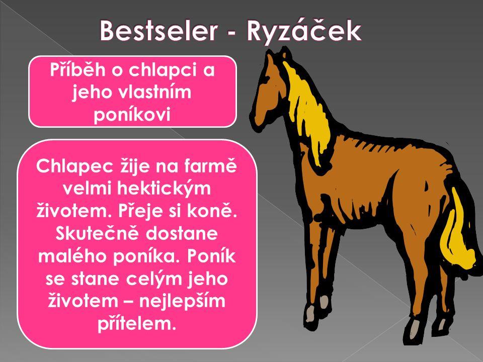 Příběh o chlapci a jeho vlastním poníkovi Chlapec žije na farmě velmi hektickým životem.