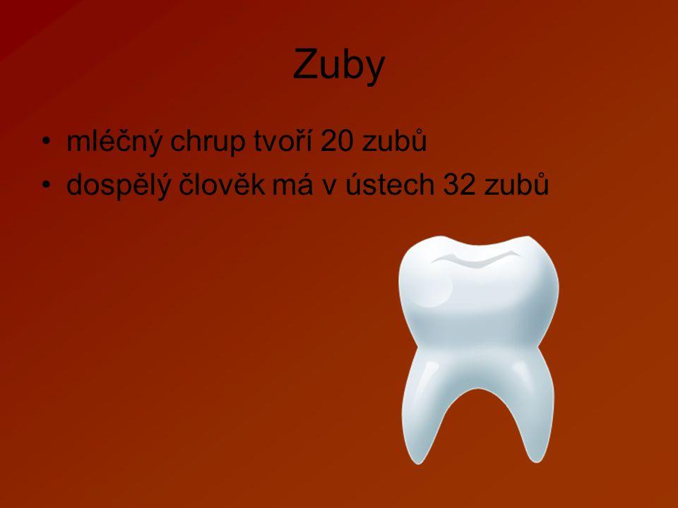 Zuby mléčný chrup tvoří 20 zubů dospělý člověk má v ústech 32 zubů