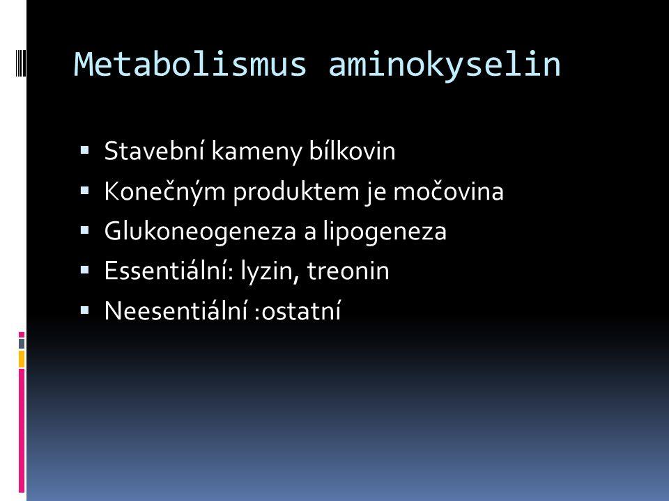 Metabolismus aminokyselin  Stavební kameny bílkovin  Konečným produktem je močovina  Glukoneogeneza a lipogeneza  Essentiální: lyzin, treonin  Ne