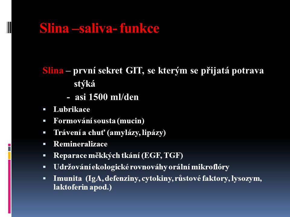 Slina –saliva- funkce Slina – první sekret GIT, se kterým se přijatá potrava stýká - asi 1500 ml/den  Lubrikace  Formování sousta (mucin)  Trávení