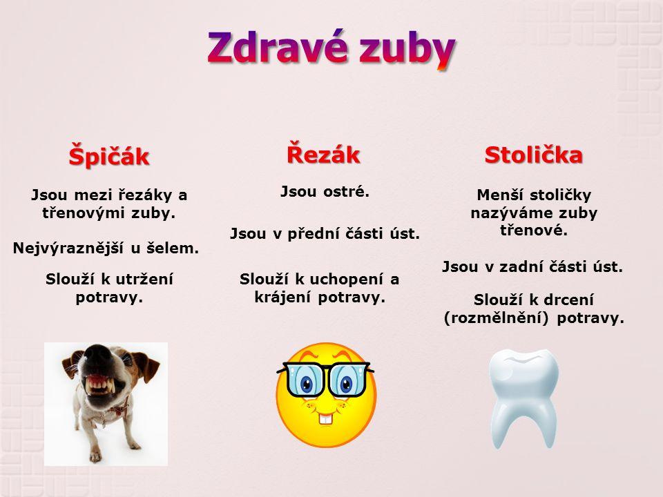 Lidský zub – stolička A - korunka B – kořen 1.- zubní sklovina 2.- zubovina 3.- zubní dřeň 4.- dáseň 5.- zubní cement 6.- čelistní kost 7.- céva 8.- nerv Znáš stavbu svých zubů?
