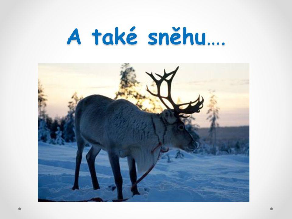 Finsko je zemí tisíce jezer, zůstaly tu po ledovcích.