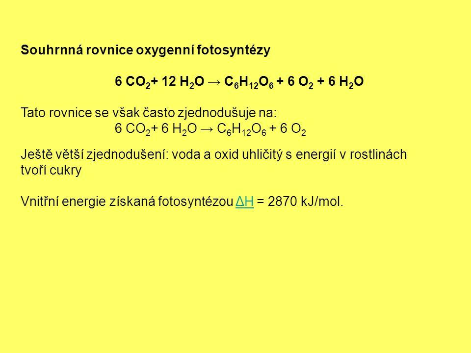 Souhrnná rovnice oxygenní fotosyntézy 6 CO 2 + 12 H 2 O → C 6 H 12 O 6 + 6 O 2 + 6 H 2 O Tato rovnice se však často zjednodušuje na: 6 CO 2 + 6 H 2 O → C 6 H 12 O 6 + 6 O 2 Ještě větší zjednodušení: voda a oxid uhličitý s energií v rostlinách tvoří cukry Vnitřní energie získaná fotosyntézou ΔH = 2870 kJ/mol.ΔH