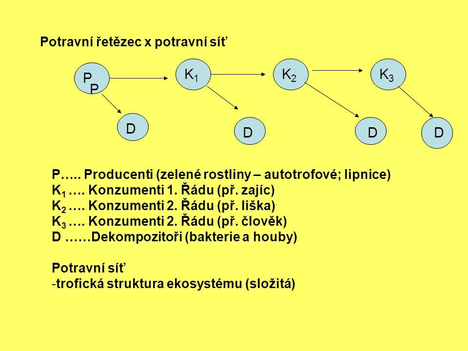 Potravní řetězec x potravní síť P P K1K1 K2K2 D DD P…..