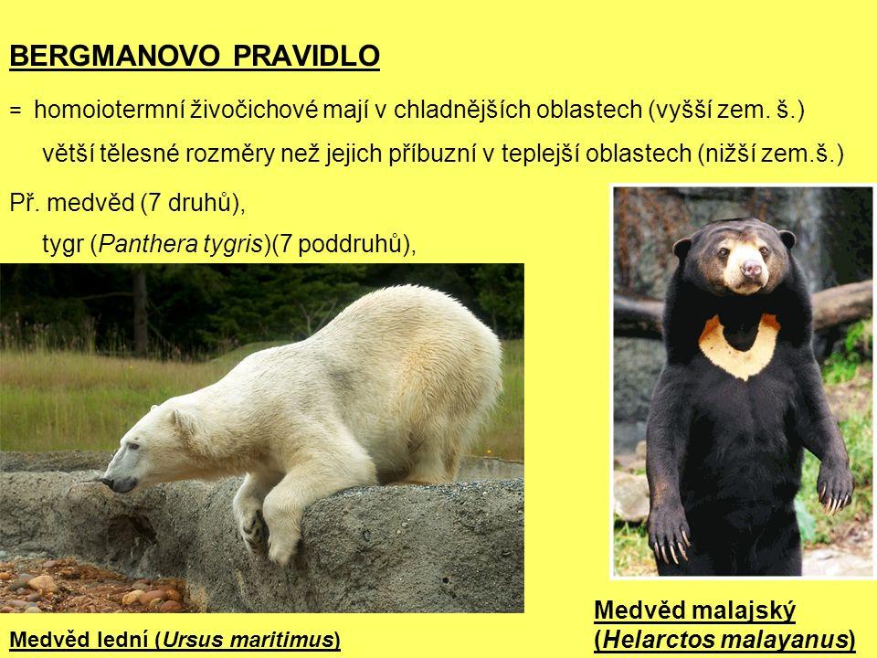 BERGMANOVO PRAVIDLO = homoiotermní živočichové mají v chladnějších oblastech (vyšší zem.