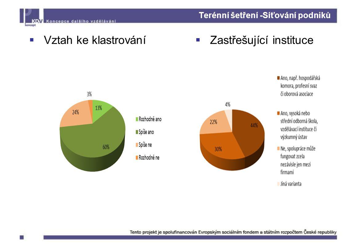 Terénní šetření -Síťování podniků  Vztah ke klastrování  Zastřešující instituce