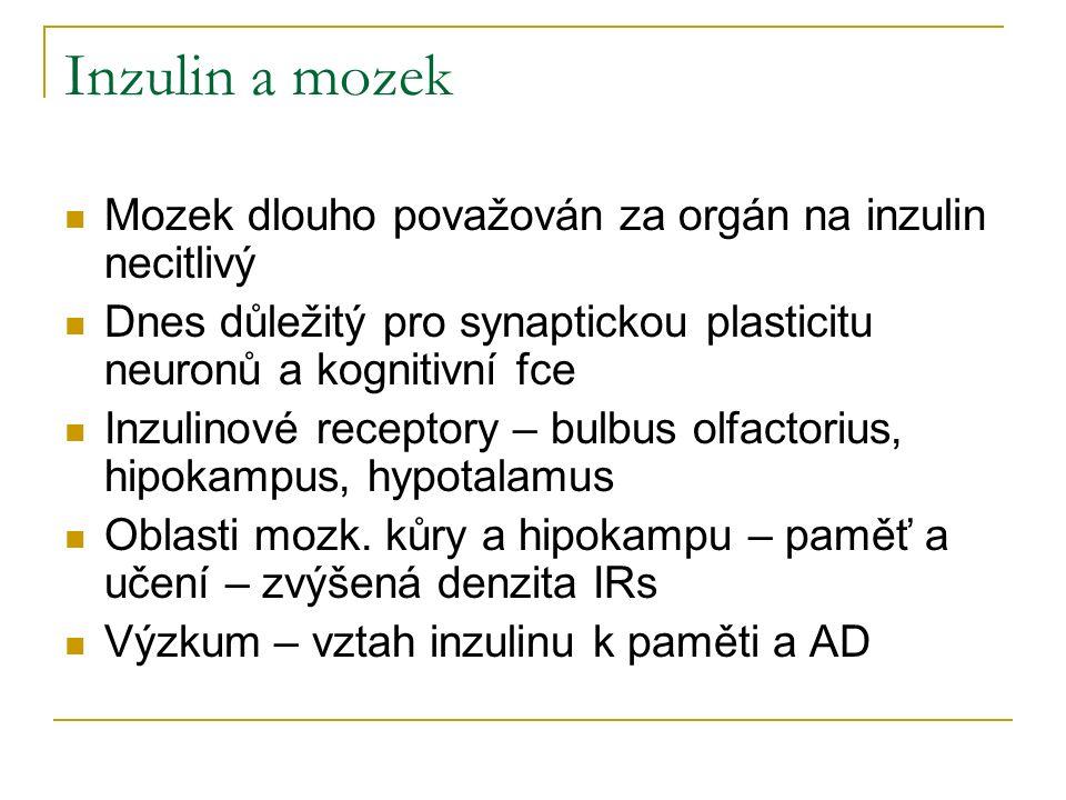 Inzulin a mozek Mozek dlouho považován za orgán na inzulin necitlivý Dnes důležitý pro synaptickou plasticitu neuronů a kognitivní fce Inzulinové receptory – bulbus olfactorius, hipokampus, hypotalamus Oblasti mozk.