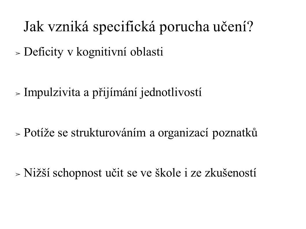 Katalog příčin SPU: 1.