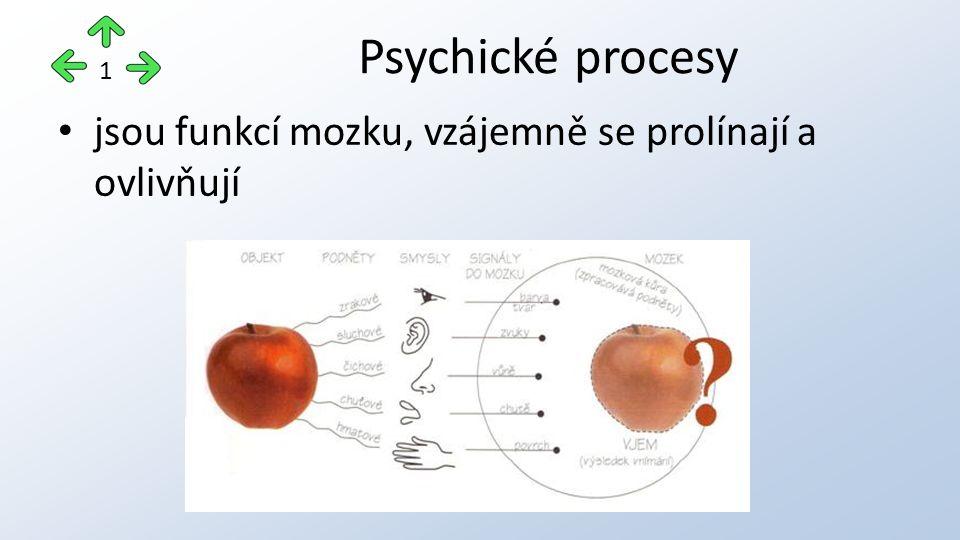 jsou funkcí mozku, vzájemně se prolínají a ovlivňují Psychické procesy 1