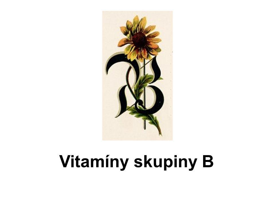 Vitamíny skupiny B