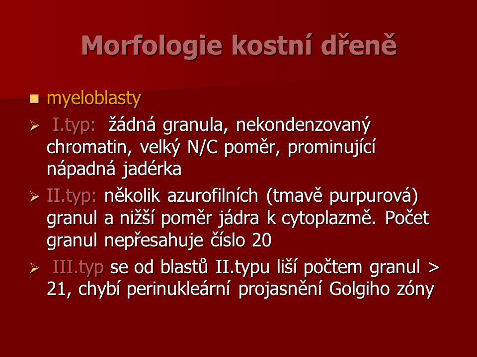 Morfologie kostní dřeně myeloblasty myeloblasty  I.typ: žádná granula, nekondenzovaný chromatin, velký N/C poměr, prominující nápadná jadérka  II.typ: několik azurofilních (tmavě purpurová) granul a nižší poměr jádra k cytoplazmě.