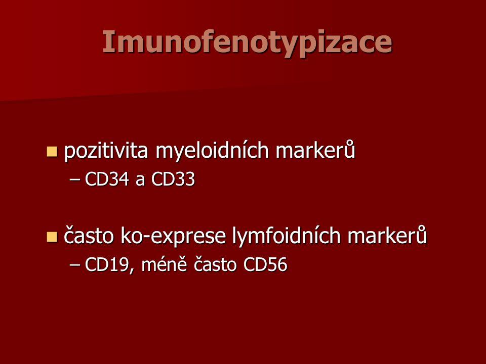 Imunofenotypizace pozitivita myeloidních markerů pozitivita myeloidních markerů –CD34 a CD33 často ko-exprese lymfoidních markerů často ko-exprese lymfoidních markerů –CD19, méně často CD56